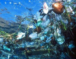 Ocean Dumping | Why and When Oceans Are Considered For Dumping