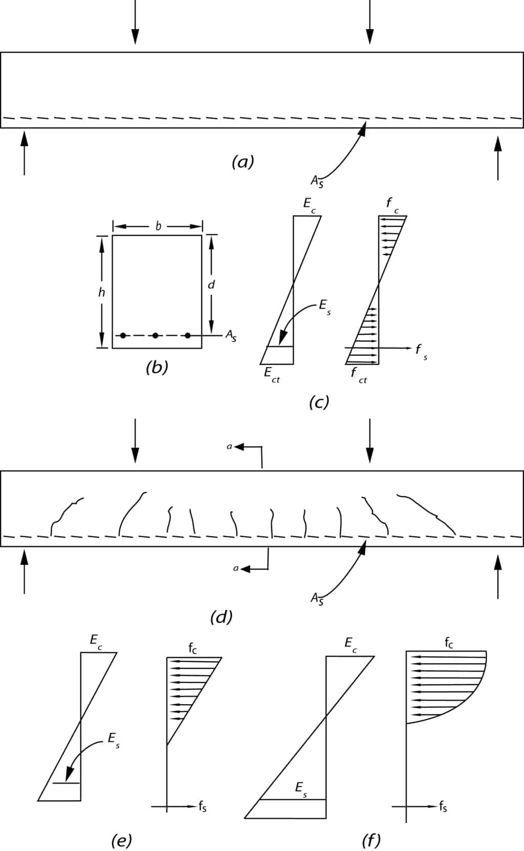 Behavior of Reinforced Concrete Beam