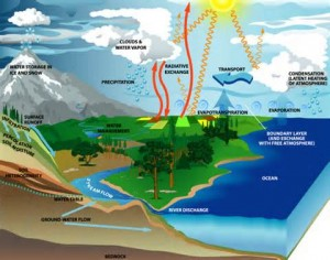 Effect of Carbon in Hydrologic Cycle