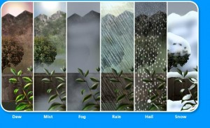 9 Different Types of Precipitation