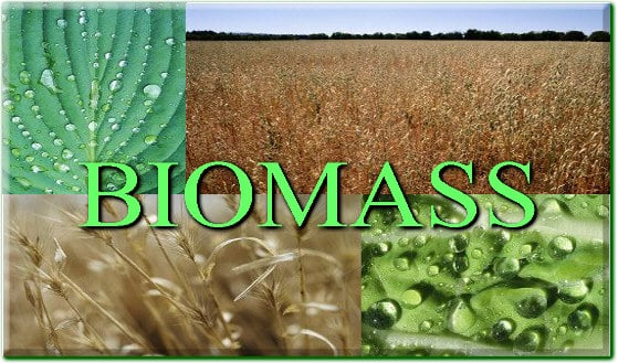 Disadvantages Of Natural Gas >> Biomass: Key Advantages and Disadvantages