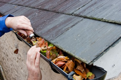 unclog the gutter - prevent basement leak